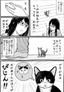 ネコ暮らしのゲーマーさん